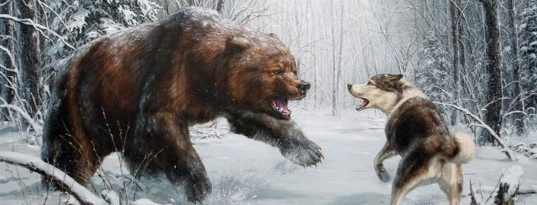 Охота на медведя